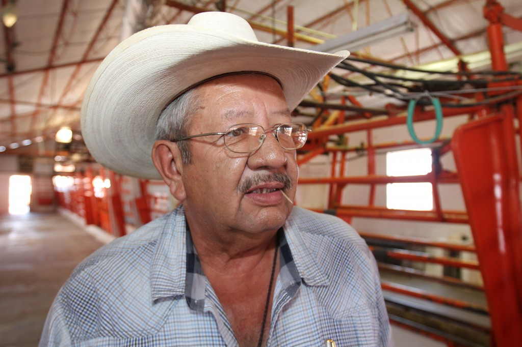 Mexican veterinarian Jesus Baca at Ganadera Chihuahua, the pen where Mexican cattle are inspected before entering the U.S. He says the cattle industry on this part of the border needs time to recover from the USDA's 2012 decision to ban agents from this part of Mexico. (Lorne Matalon)